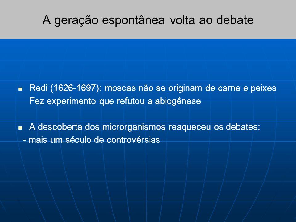 A geração espontânea volta ao debate Redi (1626-1697): moscas não se originam de carne e peixes Fez experimento que refutou a abiogênese A descoberta