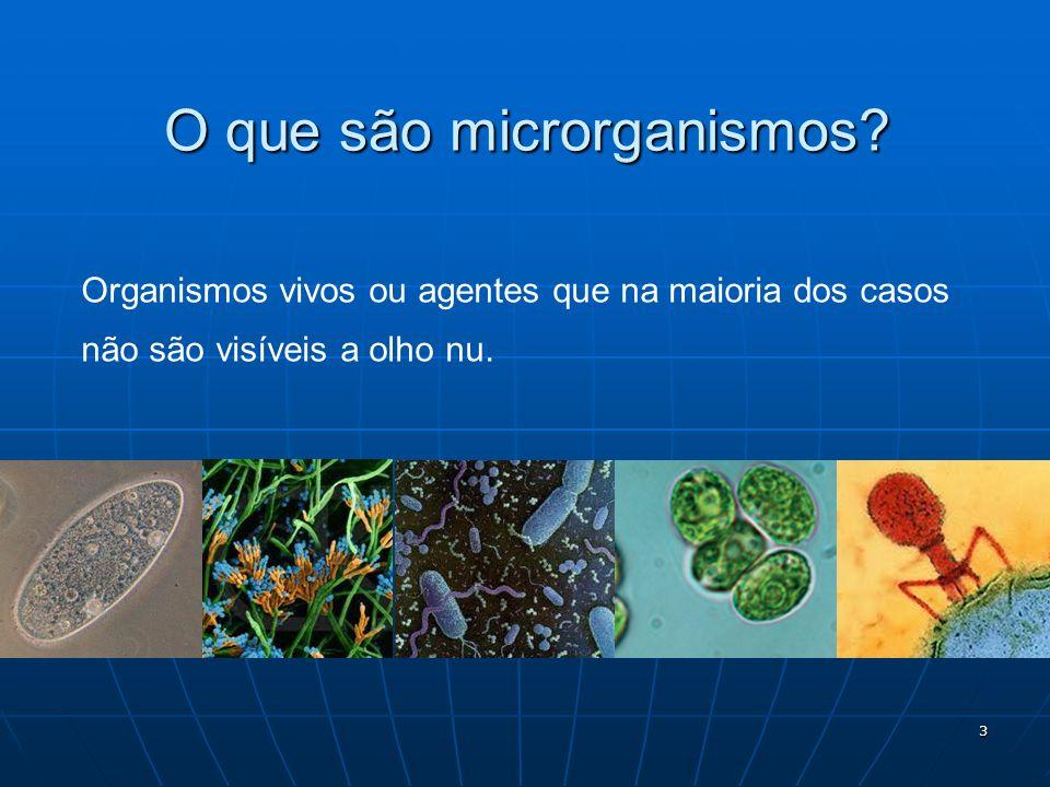 3 O que são microrganismos? Organismos vivos ou agentes que na maioria dos casos não são visíveis a olho nu.