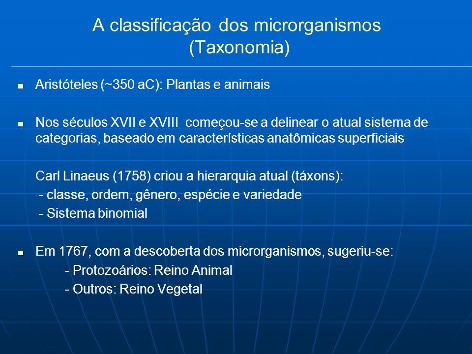 A classificação dos microrganismos (Taxonomia) Aristóteles (~350 aC): Plantas e animais Nos séculos XVII e XVIII começou-se a delinear o atual sistema