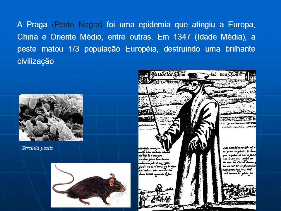 Yersinia pestis A Praga (Peste Negra) foi uma epidemia que atingiu a Europa, China e Oriente Médio, entre outras. Em 1347 (Idade Média), a peste matou