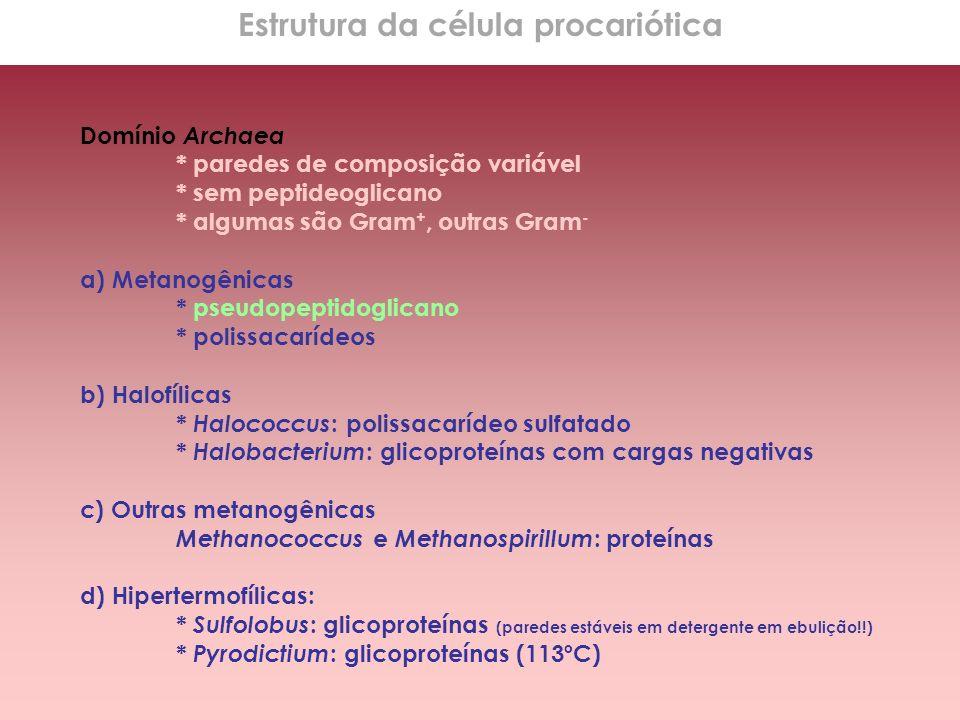 Domínio Archaea * paredes de composição variável * sem peptideoglicano * algumas são Gram +, outras Gram - a) Metanogênicas * pseudopeptidoglicano * p