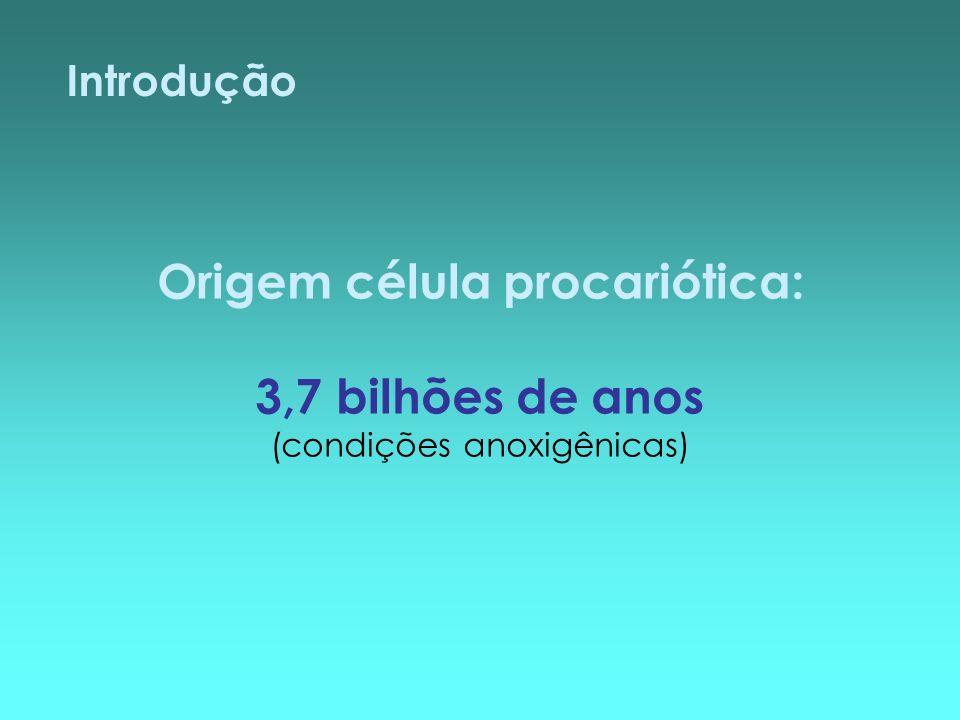 Introdução Origem célula procariótica: 3,7 bilhões de anos (condições anoxigênicas)