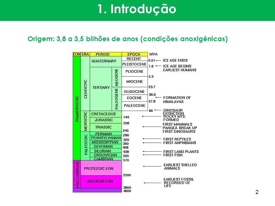 1. Introdução Origem: 3,8 a 3,5 bilhões de anos (condições anoxigênicas) 2