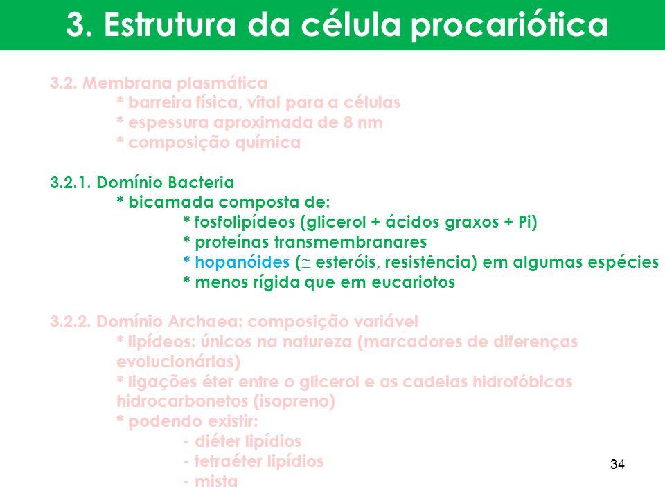 3. Estrutura da célula procariótica 3.2. Membrana plasmática * barreira física, vital para a células * espessura aproximada de 8 nm * composição quími