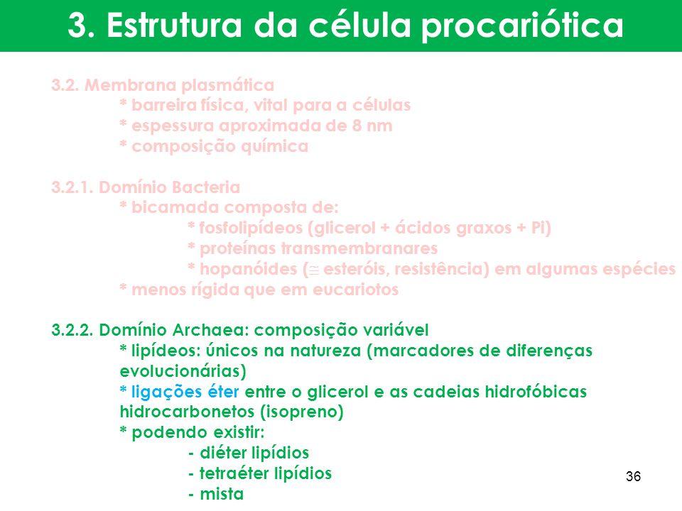 3.2. Membrana plasmática * barreira física, vital para a células * espessura aproximada de 8 nm * composição química 3.2.1. Domínio Bacteria * bicamad