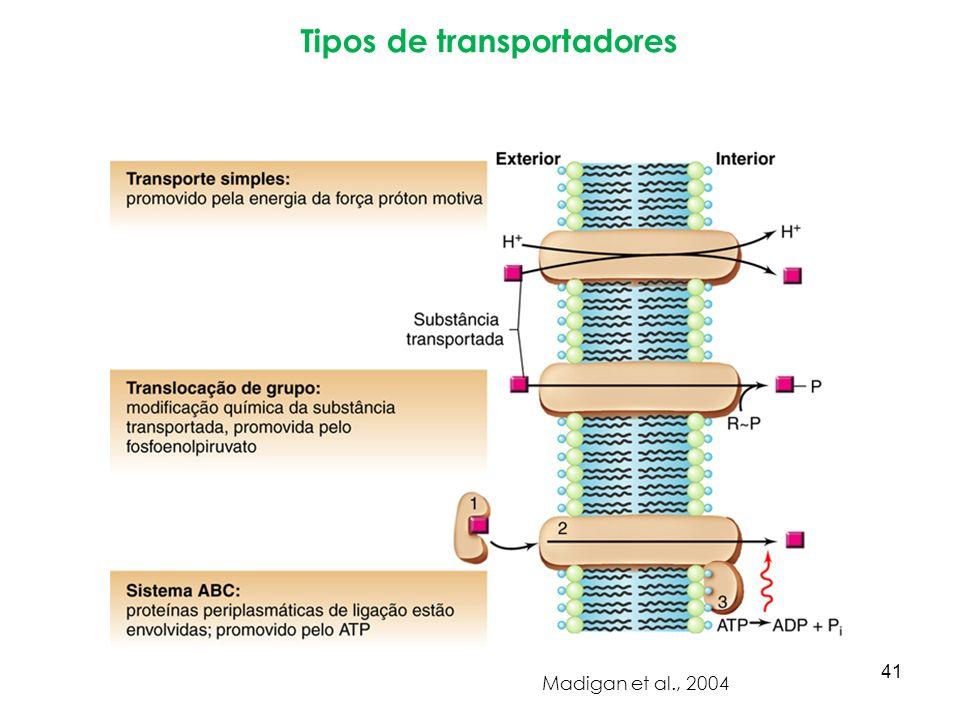 Tipos de transportadores Madigan et al., 2004 41
