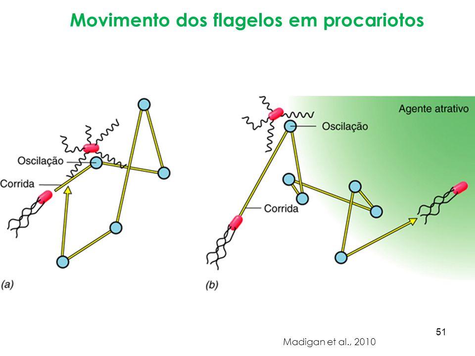 Movimento dos flagelos em procariotos Madigan et al., 2010 51