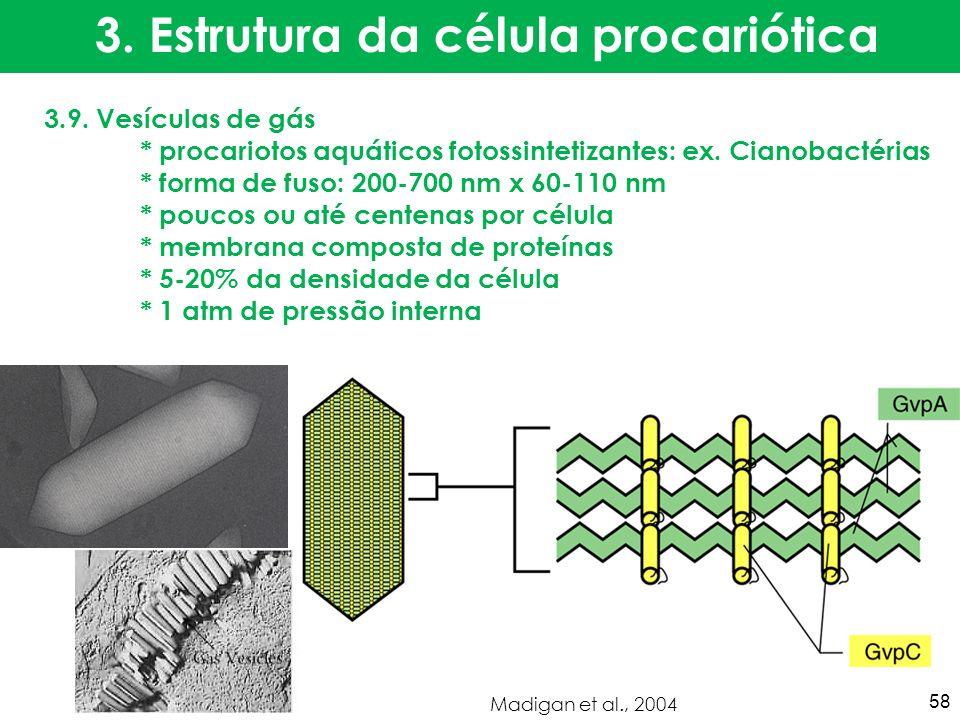 3.9. Vesículas de gás * procariotos aquáticos fotossintetizantes: ex. Cianobactérias * forma de fuso: 200-700 nm x 60-110 nm * poucos ou até centenas