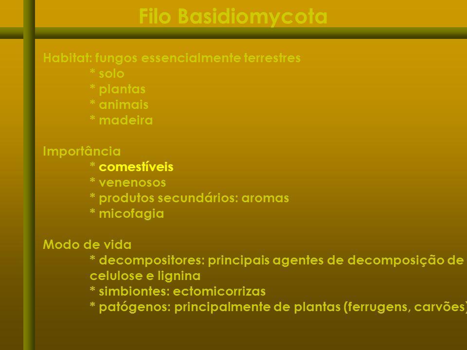 Habitat: fungos essencialmente terrestres * solo * plantas * animais * madeira Importância * comestíveis * venenosos * produtos secundários: aromas *