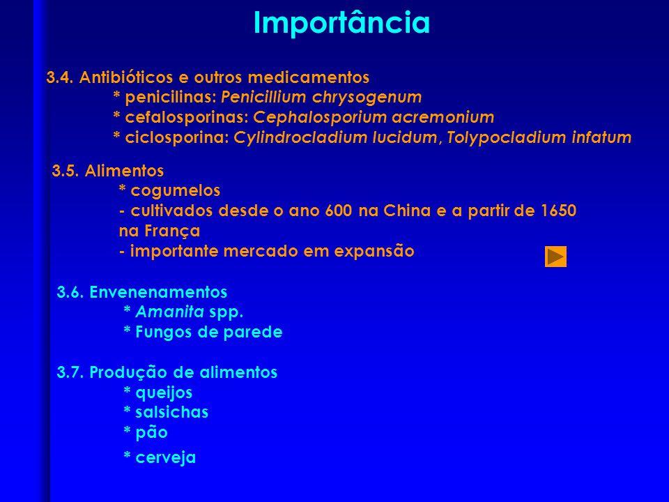 3.4. Antibióticos e outros medicamentos * penicilinas: Penicillium chrysogenum * cefalosporinas: Cephalosporium acremonium * ciclosporina: Cylindrocla