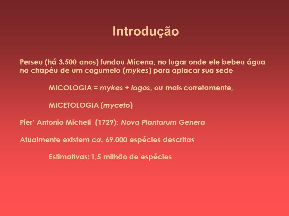 Introdução Perseu (há 3.500 anos) fundou Micena, no lugar onde ele bebeu água no chapéu de um cogumelo ( mykes ) para aplacar sua sede MICOLOGIA = myk