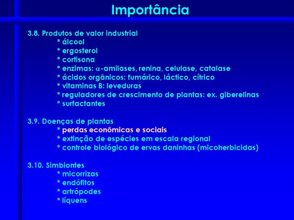 3.8. Produtos de valor industrial * álcool * ergosterol * cortisona * enzimas: -amilases, renina, celulase, catalase * ácidos orgânicos: fumárico, lác