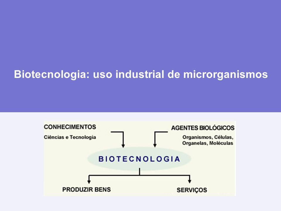 Produtos de síntese microbiana Antibióticos Penicilina 1928 (descoberta) a 1941 (industrialização): produtividade foi aumentada em 1000 x Seleção de microrganismos