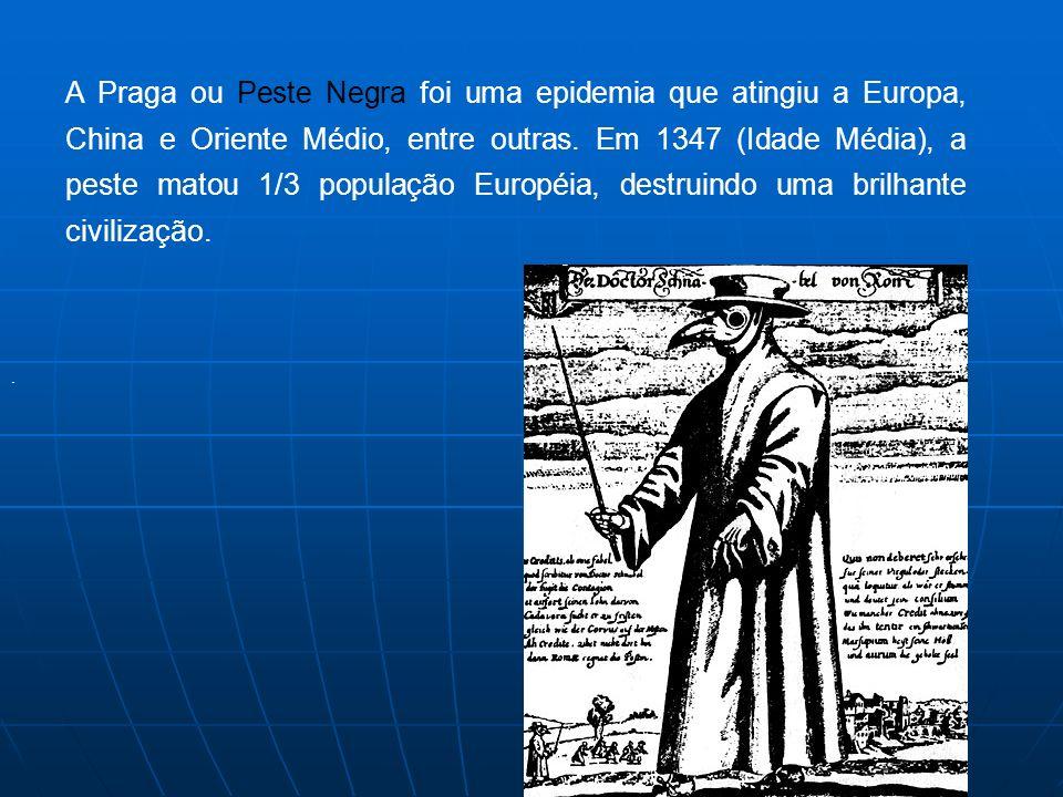 A Praga ou Peste Negra foi uma epidemia que atingiu a Europa, China e Oriente Médio, entre outras.