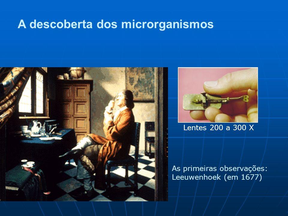 A descoberta dos microrganismos As primeiras observações: Leeuwenhoek (em 1677) Lentes 200 a 300 X