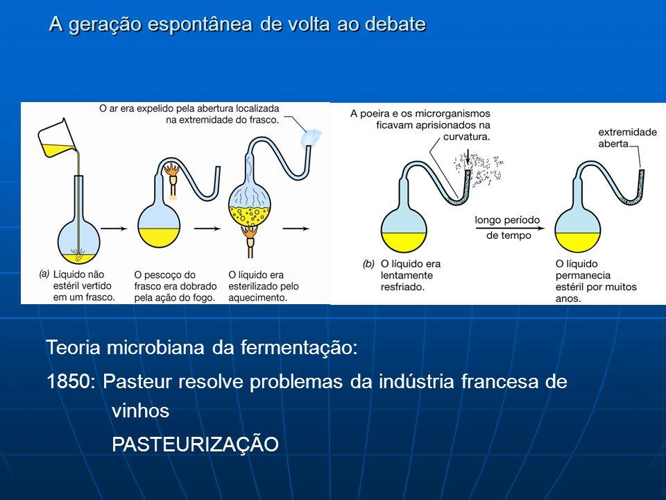 A geração espontânea de volta ao debate Teoria microbiana da fermentação: 1850: Pasteur resolve problemas da indústria francesa de vinhos PASTEURIZAÇÃO