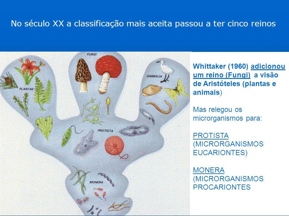 No século XX a classificação mais aceita passou a ter cinco reinos Whittaker (1960) adicionou um reino (Fungi) a visão de Aristóteles (plantas e animais) Mas relegou os microrganismos para: PROTISTA (MICRORGANISMOS EUCARIONTES) MONERA (MICRORGANISMOS PROCARIONTES
