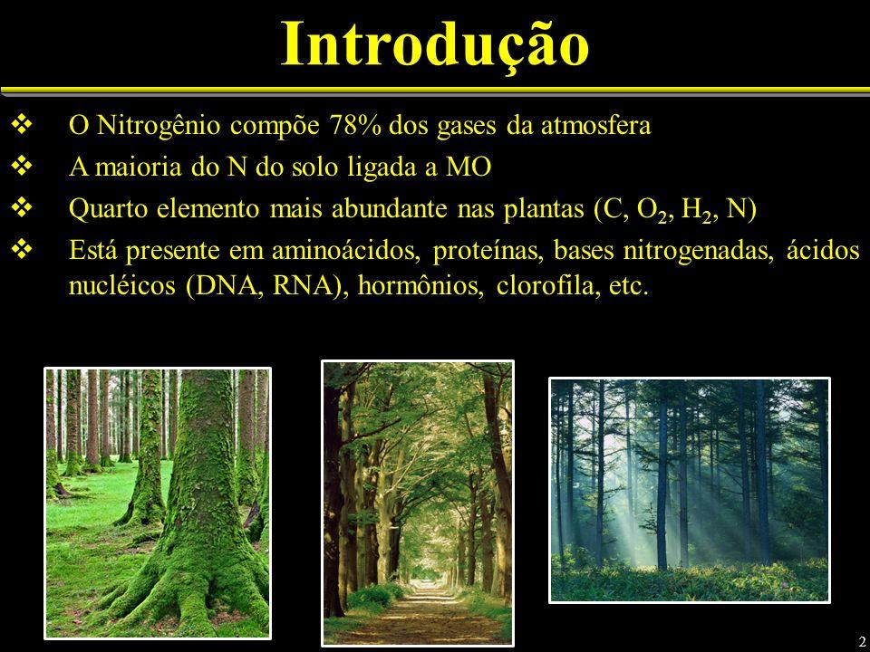 Introdução O Nitrogênio compõe 78% dos gases da atmosfera A maioria do N do solo ligada a MO Quarto elemento mais abundante nas plantas (C, O 2, H 2, N) Está presente em aminoácidos, proteínas, bases nitrogenadas, ácidos nucléicos (DNA, RNA), hormônios, clorofila, etc.