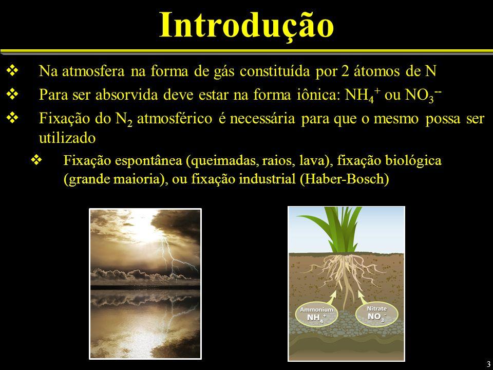 Introdução Na atmosfera na forma de gás constituída por 2 átomos de N Para ser absorvida deve estar na forma iônica: NH 4 + ou NO 3 -- Fixação do N 2 atmosférico é necessária para que o mesmo possa ser utilizado Fixação espontânea (queimadas, raios, lava), fixação biológica (grande maioria), ou fixação industrial (Haber-Bosch) 3