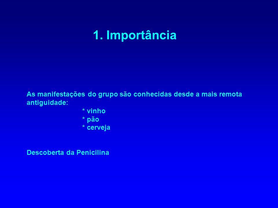 Reprodução Tipos de esporos assexuais: - esporangiósporos: esporos internos produzidos por mitose em esporângios (Filo Zygomycota) - conídios - zoósporos esporangiósporos esporângio Rhizopus stolonifer