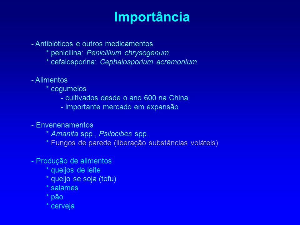 EUA: Stachybotrys chartarum Problemas de saúde relacionados a casas e edifícios (sick building syndrome).