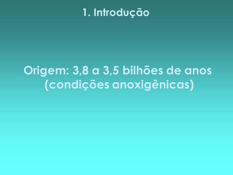 1. Introdução Origem: 3,8 a 3,5 bilhões de anos (condições anoxigênicas)