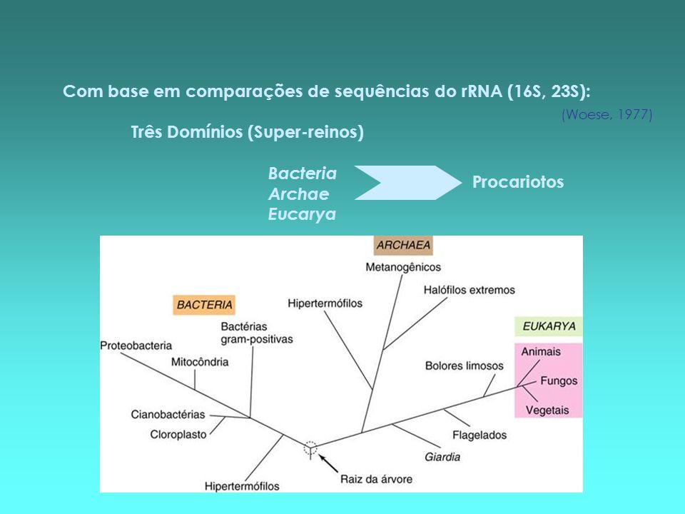Com base em comparações de sequências do rRNA (16S, 23S): Três Domínios (Super-reinos) Bacteria Archae Eucarya Procariotos (Woese, 1977)