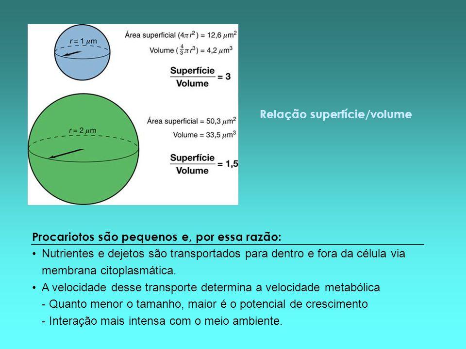 Relação superfície/volume Procariotos são pequenos e, por essa razão: Nutrientes e dejetos são transportados para dentro e fora da célula via membrana
