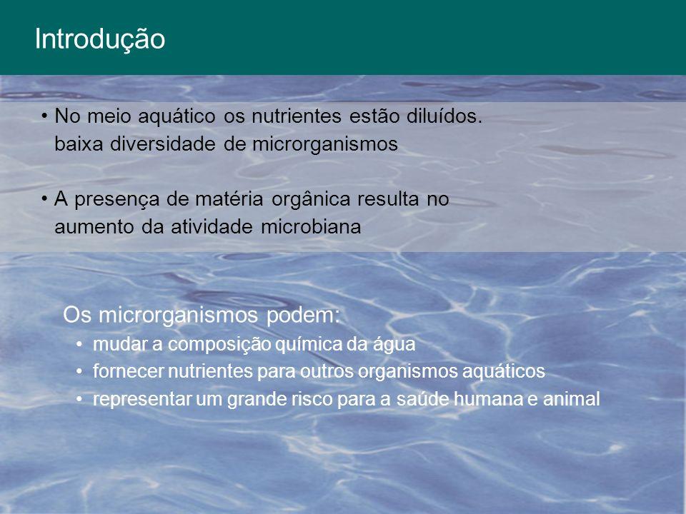Introdução No meio aquático os nutrientes estão diluídos. baixa diversidade de microrganismos A presença de matéria orgânica resulta no aumento da ati
