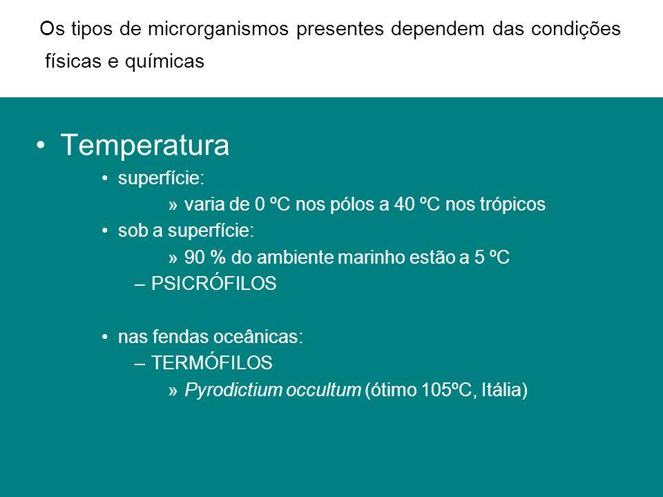 Temperatura superfície: »varia de 0 ºC nos pólos a 40 ºC nos trópicos sob a superfície: »90 % do ambiente marinho estão a 5 ºC –PSICRÓFILOS nas fendas