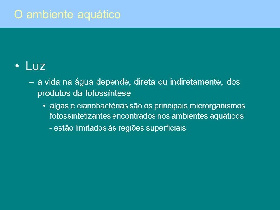 Luz –a vida na água depende, direta ou indiretamente, dos produtos da fotossíntese algas e cianobactérias são os principais microrganismos fotossintet