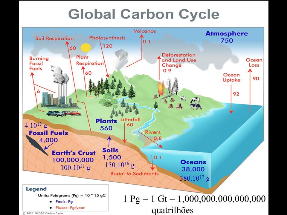 1 Pg = 1 Gt = 1,000,000,000,000,000 g quatrilhões 100.10 21 g 150.10 16 g 380.10 17 g 4.10 18 g
