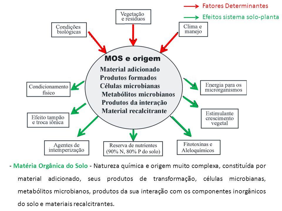 - Matéria Orgânica do Solo - Natureza química e origem muito complexa, constituída por material adicionado, seus produtos de transformação, células mi