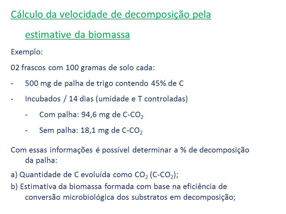 Cálculo da velocidade de decomposição pela estimative da biomassa Exemplo: 02 frascos com 100 gramas de solo cada: -500 mg de palha de trigo contendo