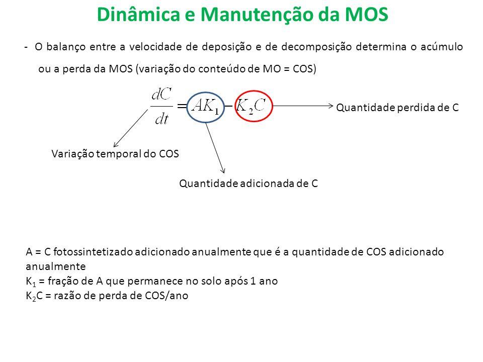 Dinâmica e Manutenção da MOS - O balanço entre a velocidade de deposição e de decomposição determina o acúmulo ou a perda da MOS (variação do conteúdo