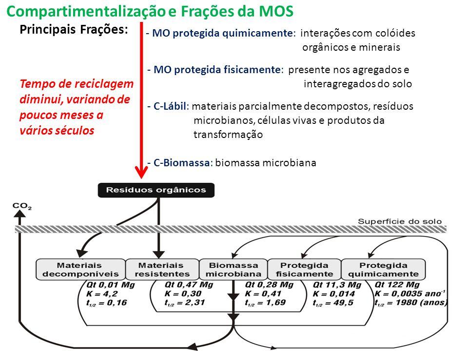 Compartimentalização e Frações da MOS Principais Frações: - MO protegida quimicamente: interações com colóides orgânicos e minerais - MO protegida fis