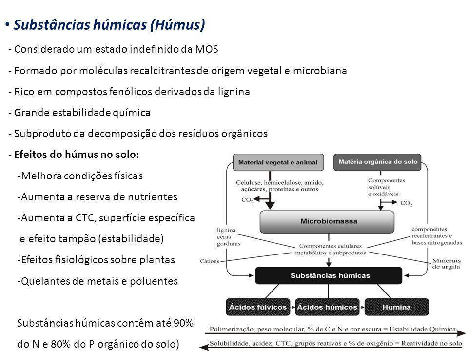Substâncias húmicas (Húmus) - Considerado um estado indefinido da MOS - Formado por moléculas recalcitrantes de origem vegetal e microbiana - Rico em
