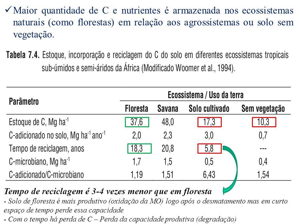 Maior quantidade de C e nutrientes é armazenada nos ecossistemas naturais (como florestas) em relação aos agrossistemas ou solo sem vegetação. Tempo d