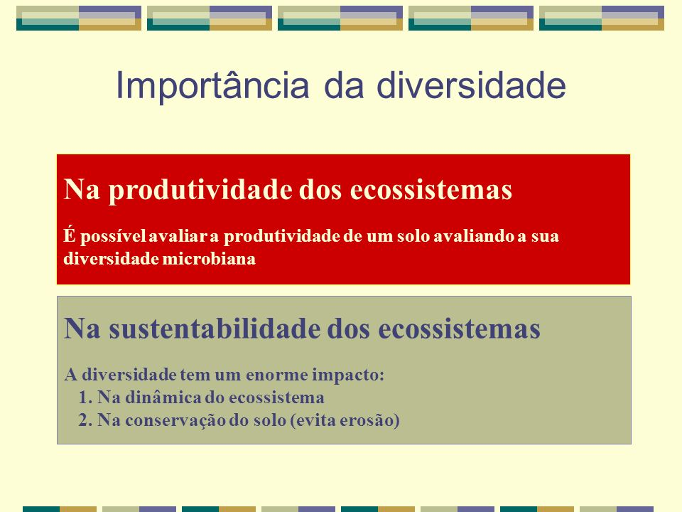 Importância da diversidade Na produtividade dos ecossistemas É possível avaliar a produtividade de um solo avaliando a sua diversidade microbiana Na sustentabilidade dos ecossistemas A diversidade tem um enorme impacto: 1.