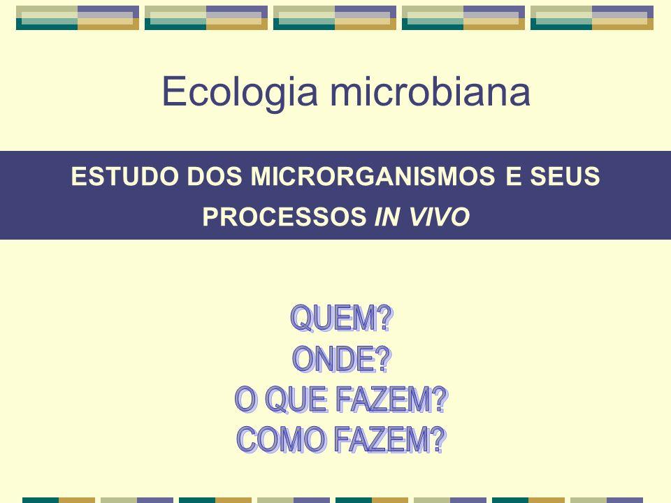 Apresentação da disciplina Objetivos Importância dos microrganismos no planeta Processo evolutivo da vida Sustentabilidade do planeta Técnicas utilizadas Breve histórico