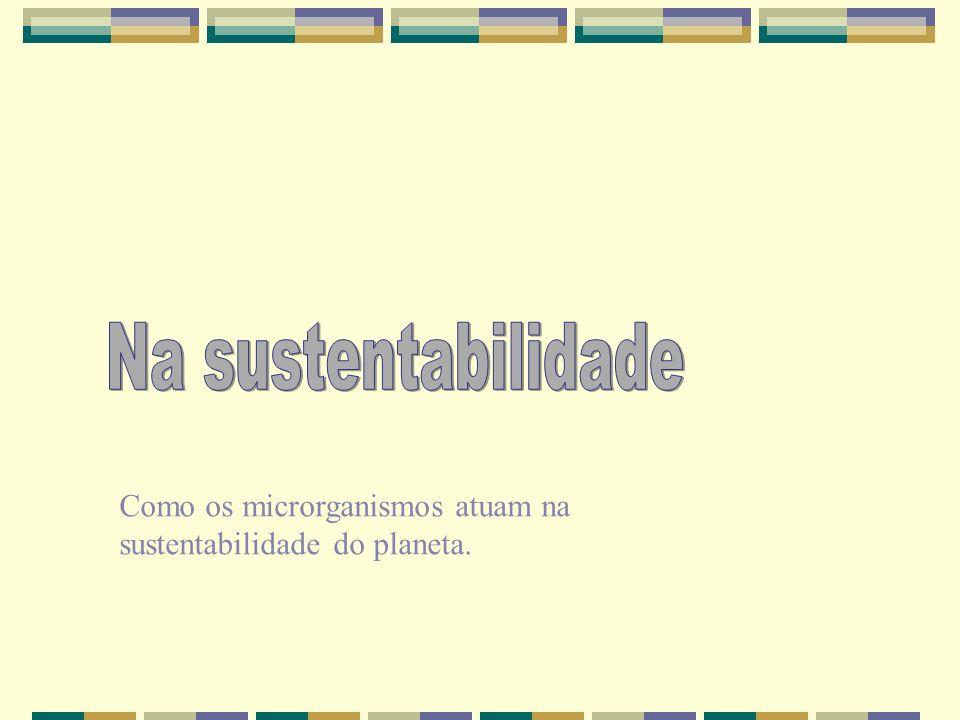 Como os microrganismos atuam na sustentabilidade do planeta.