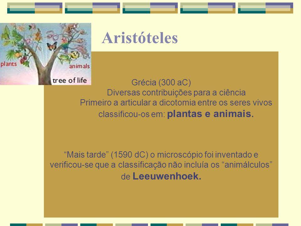 Grécia (300 aC) Diversas contribuições para a ciência Primeiro a articular a dicotomia entre os seres vivos classificou-os em: plantas e animais. Mais