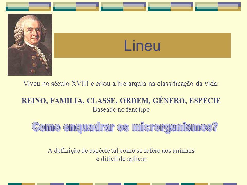 Lineu Viveu no século XVIII e criou a hierarquia na classificação da vida: REINO, FAMÍLIA, CLASSE, ORDEM, GÊNERO, ESPÉCIE Baseado no fenótipo A defini