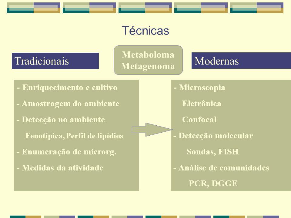 Técnicas - Enriquecimento e cultivo - Amostragem do ambiente - Detecção no ambiente Fenotípica, Perfil de lipídios - Enumeração de microrg. - Medidas