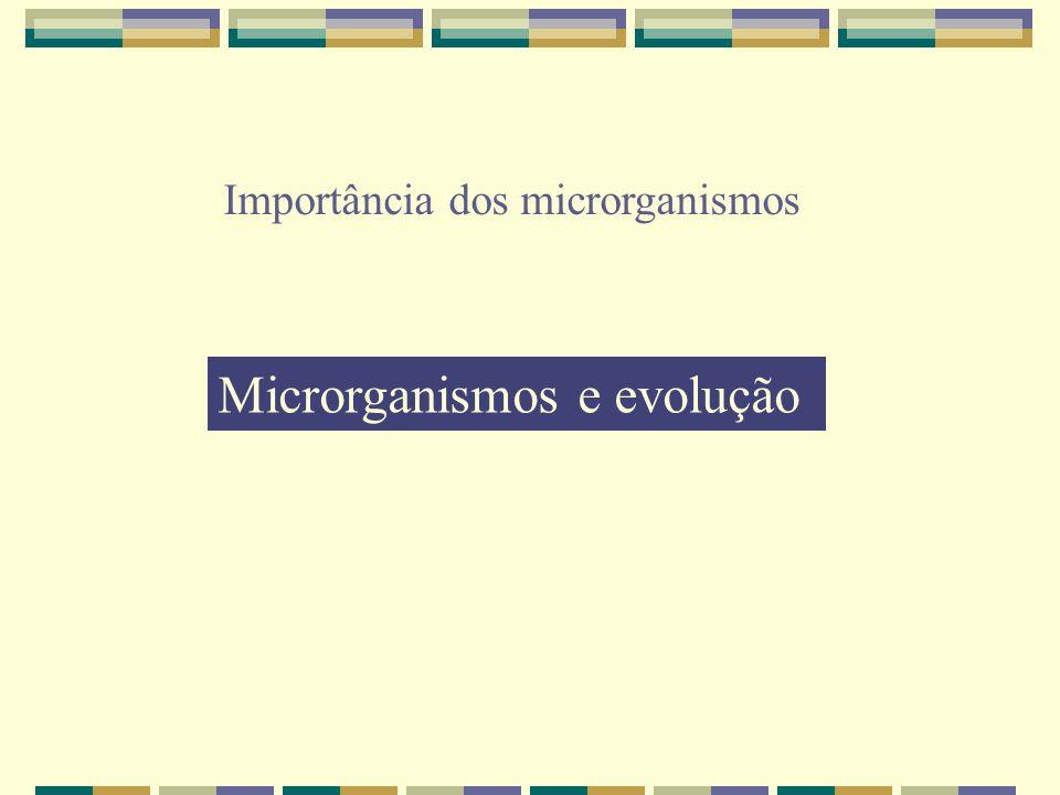 Microrganismos e evolução Importância dos microrganismos