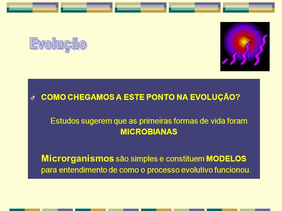 COMO CHEGAMOS A ESTE PONTO NA EVOLUÇÃO? Estudos sugerem que as primeiras formas de vida foram MICROBIANAS Microrganismos são simples e constituem MODE