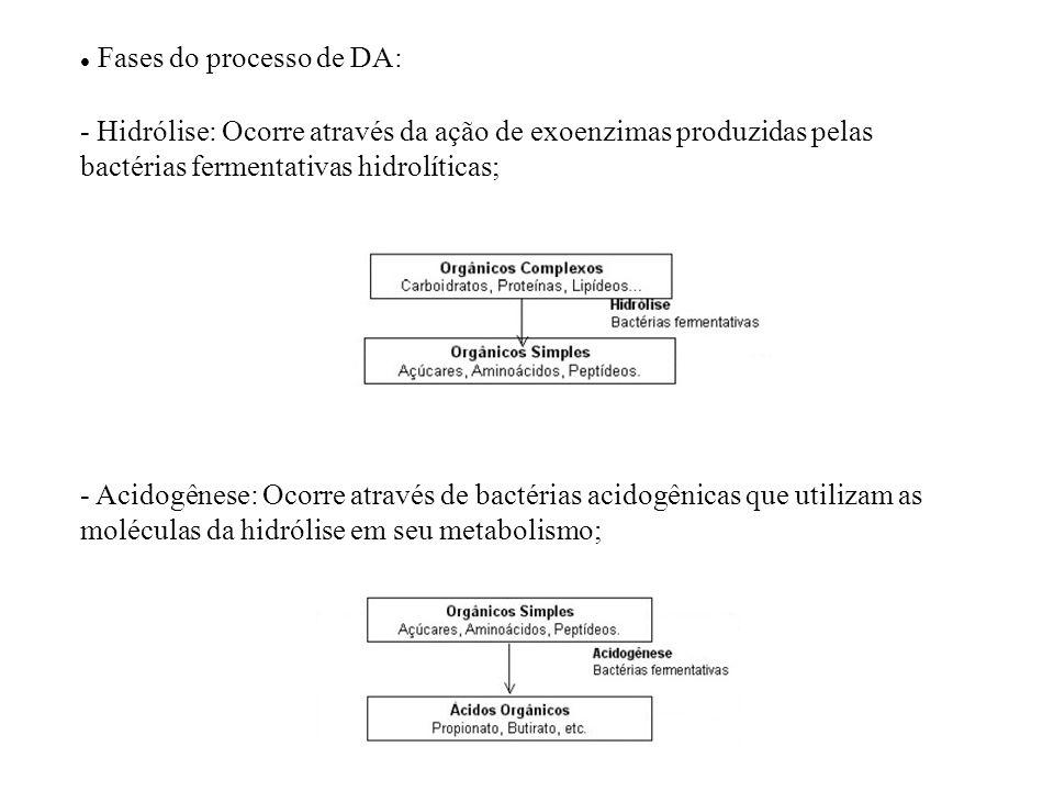 Fases do processo de DA: - Hidrólise: Ocorre através da ação de exoenzimas produzidas pelas bactérias fermentativas hidrolíticas; - Acidogênese: Ocorr