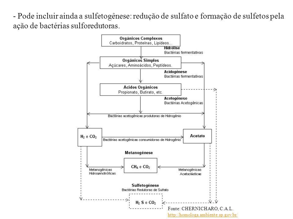 - Pode incluir ainda a sulfetogênese: redução de sulfato e formação de sulfetos pela ação de bactérias sulforedutoras. Fonte: CHERNICHARO, C.A.L. http
