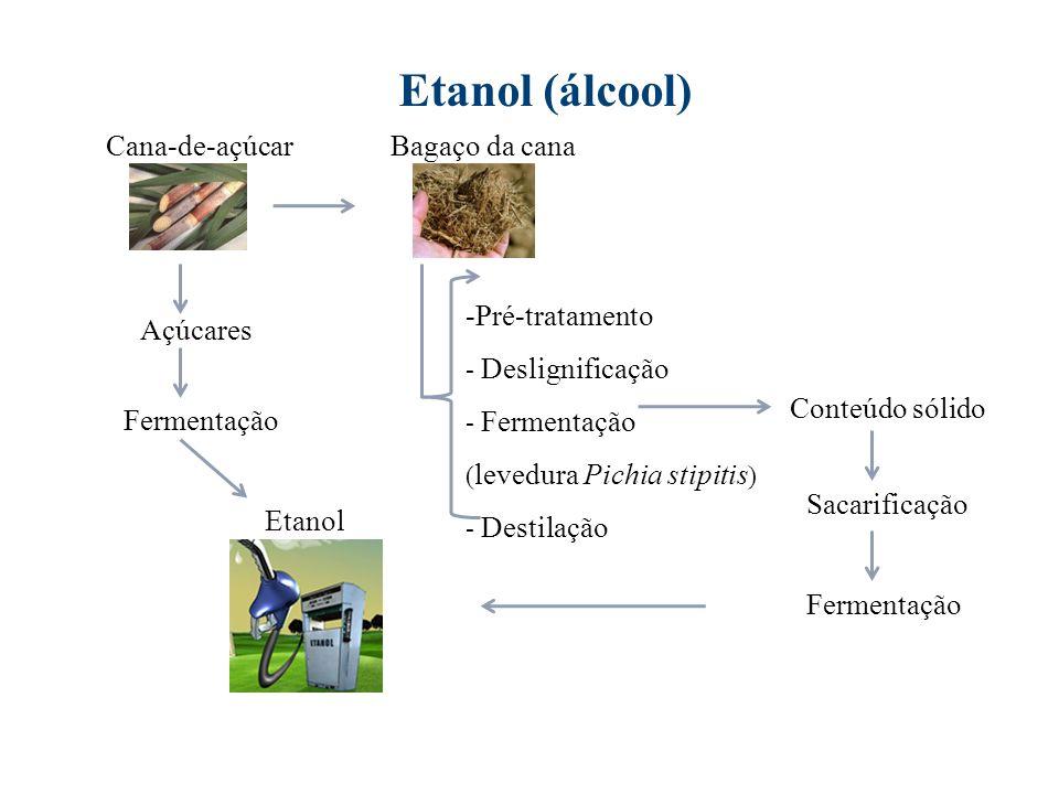 Etanol (álcool) Fermentação Cana-de-açúcar Etanol Bagaço da cana -Pré-tratamento - Deslignificação - Fermentação ( levedura Pichia stipitis ) - Destil