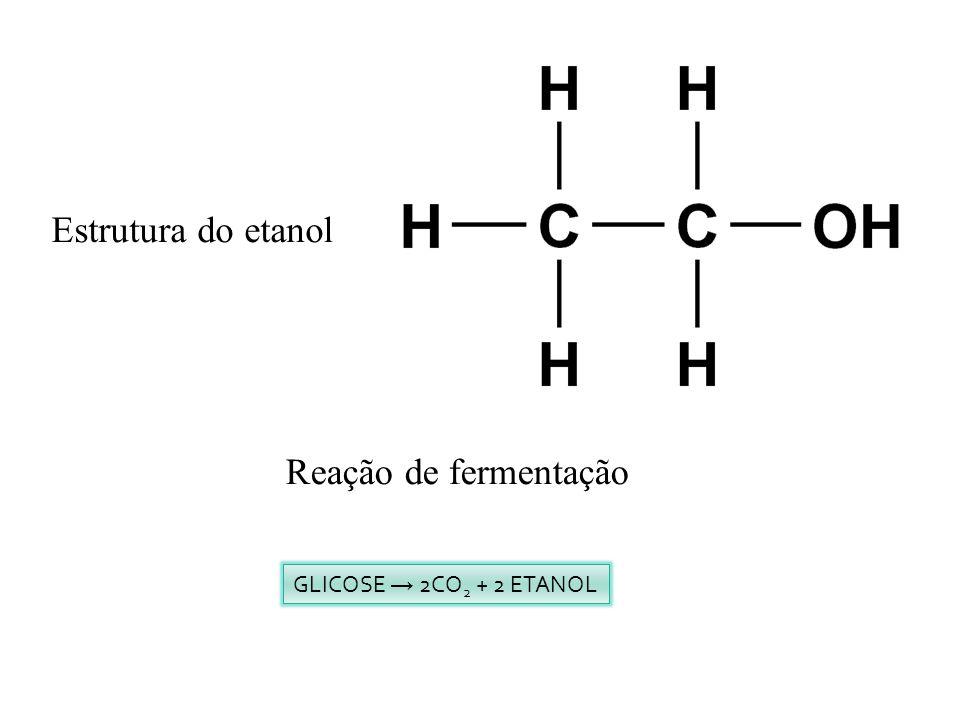 Estrutura do etanol Reação de fermentação GLICOSE 2CO 2 + 2 ETANOL
